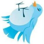 Twitter-dood-vogeltje