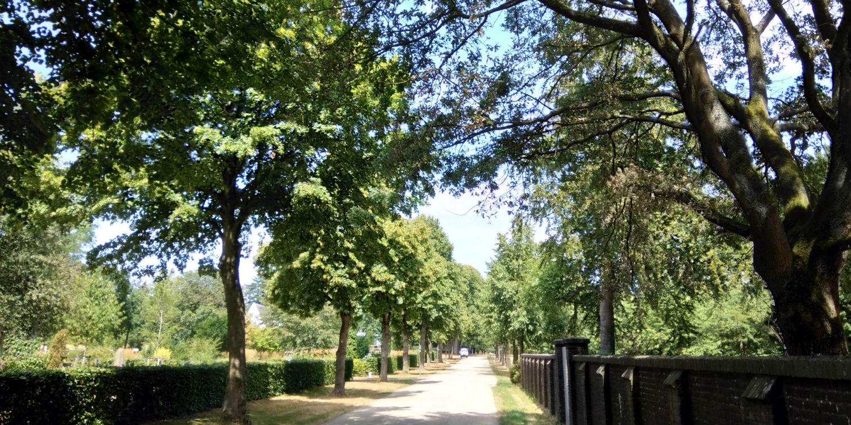 Moscowa, Arnhem